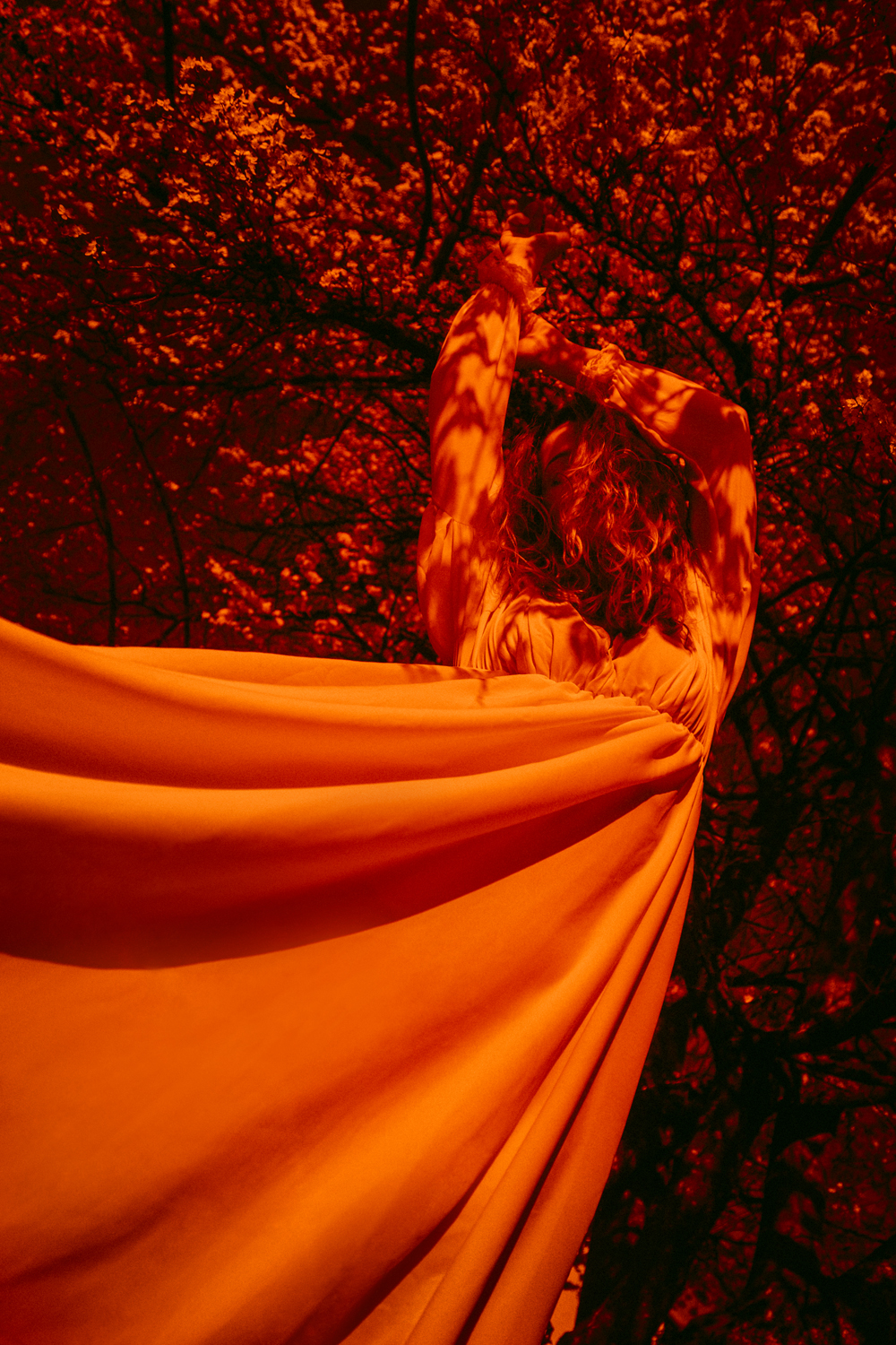 """Photo series """"Celebrate the rebirth of nature, spring"""" from artist Ness Rubey"""